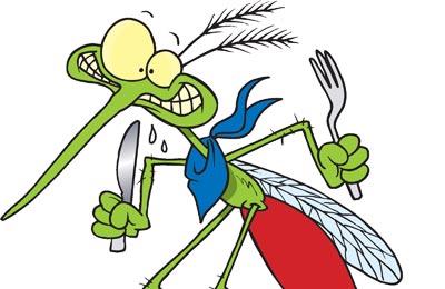 Biljka koja rastjeruje insekte