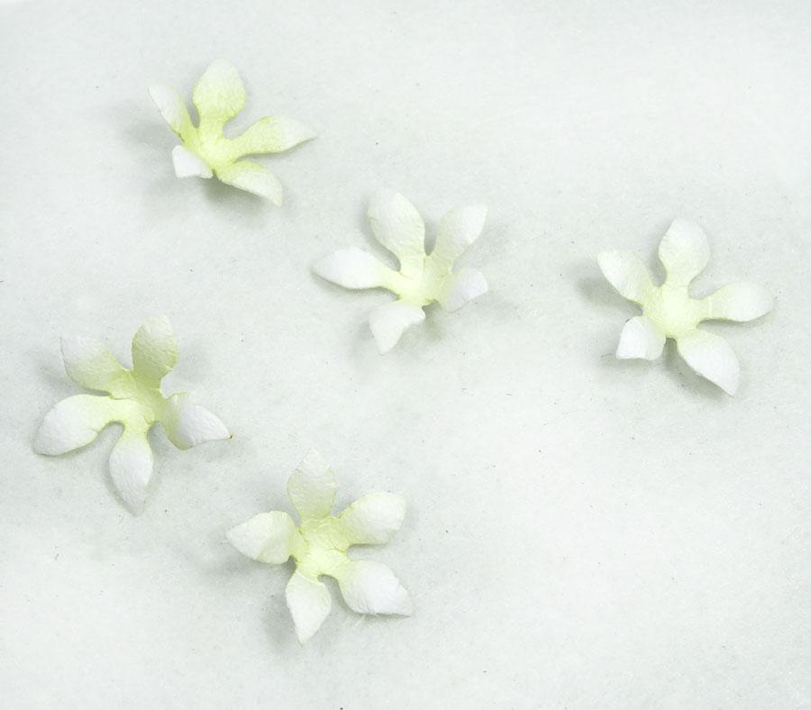 Jasmine-Gift-Card-Holder-Annette-Green-13