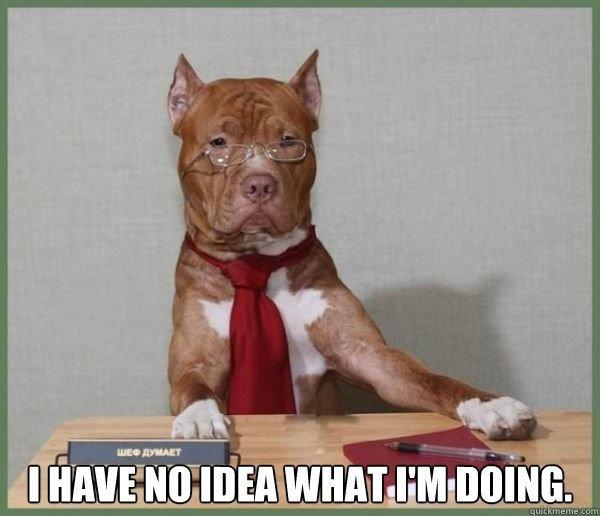 I Have No Idea - GiveMeSomeEnglish!!!