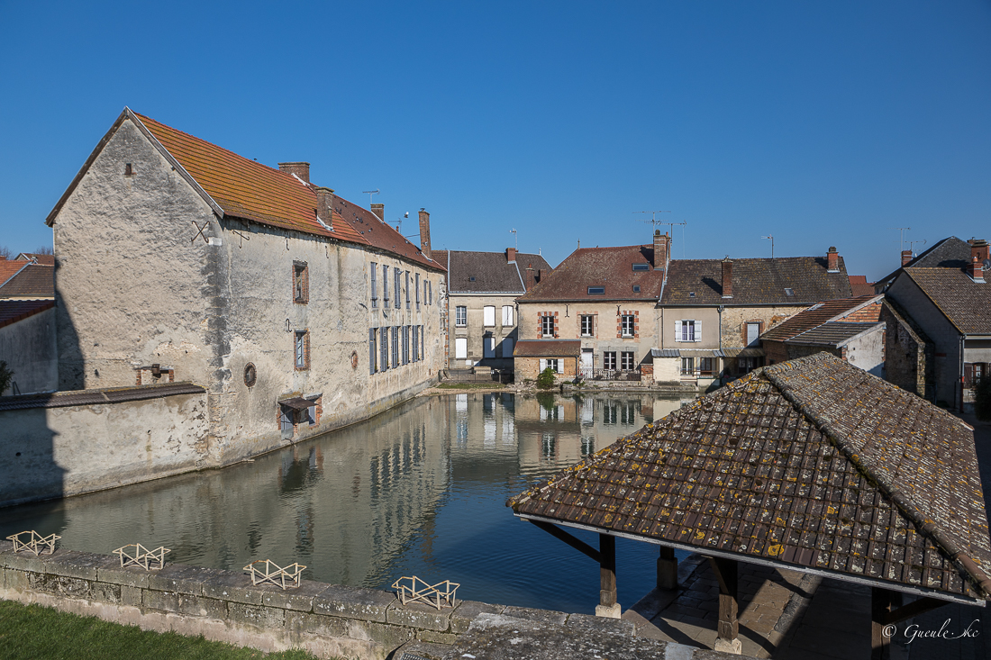 Etang du puits Saint-Martin à Vertus-sur-Marne