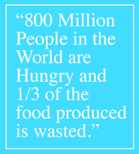 800 million people are hungry