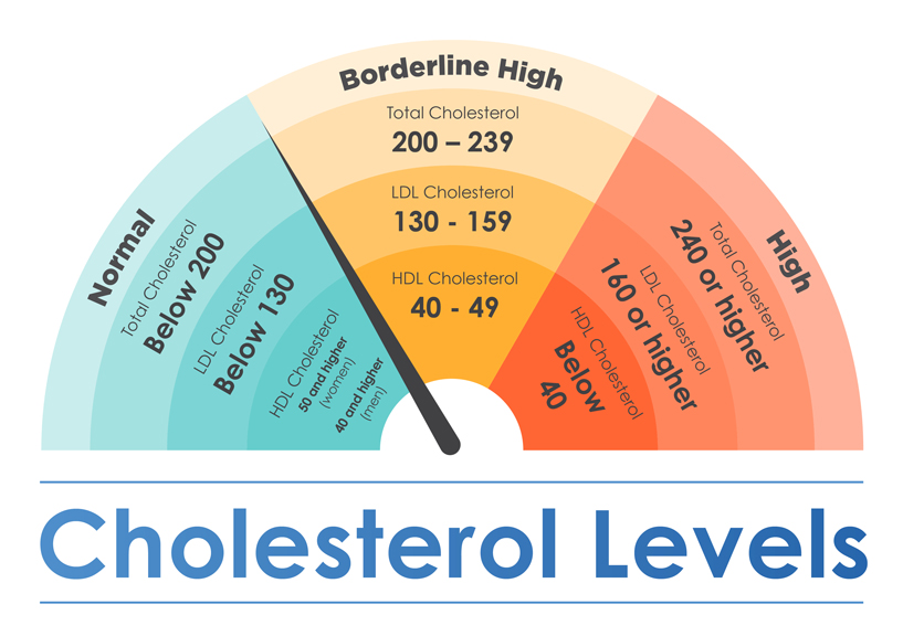 Blood Cholesterol Level Chart herbal daily blog