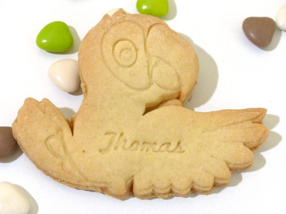 lot 10 biscuit sablé perroquet