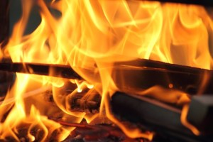Fire Pit Flames