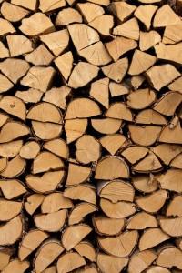 Green Fire Wood