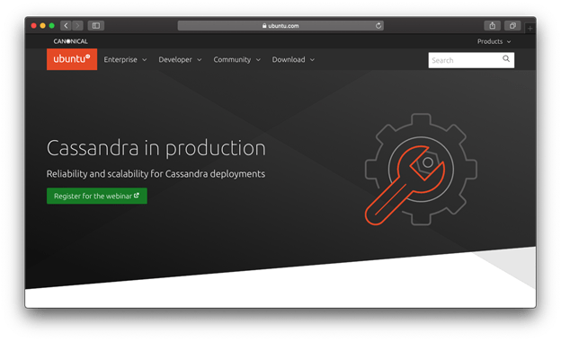 This is how ubuntu uses their logo to make their site look professional