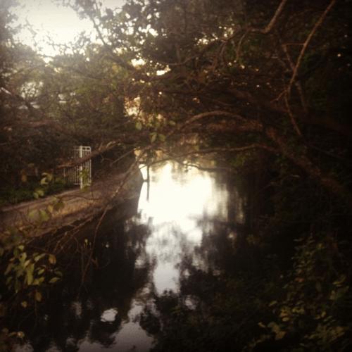 outdoors-running-fortlauderdale-intercoastal