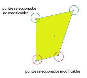 ILLCS 03 04 herramientas basicas Selección directa con Illustrator