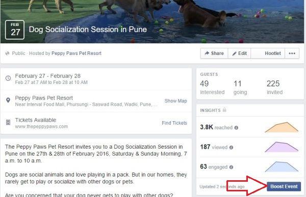 Dog Socialization Event Facebook