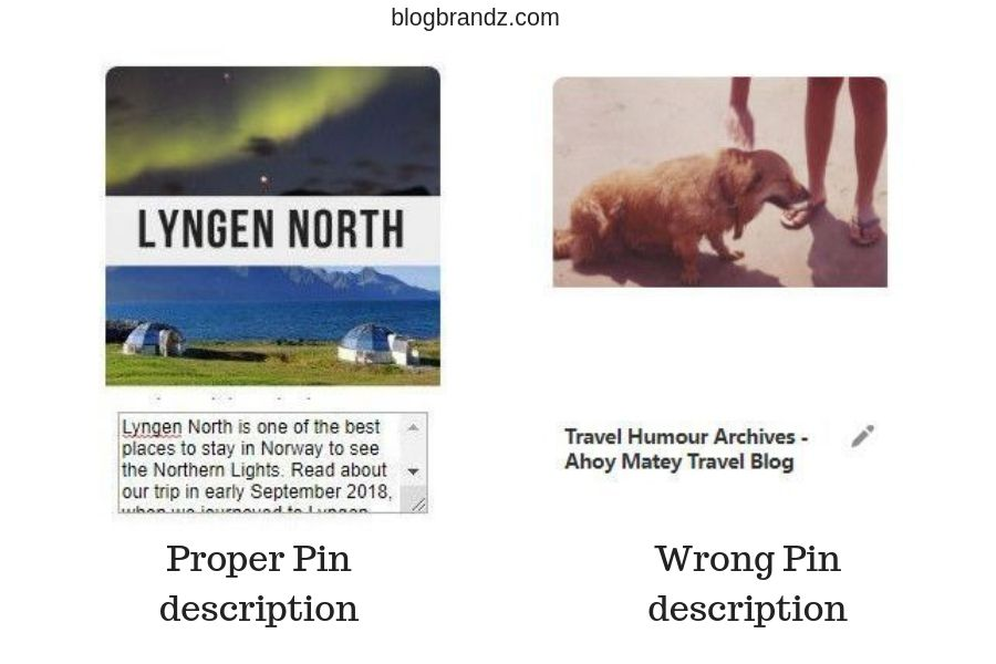 Examples of Good and Bad Pin descriptions