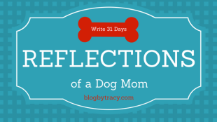 Reflections of a Dog Mom