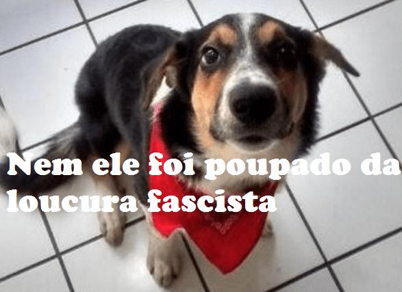 fascistas capa