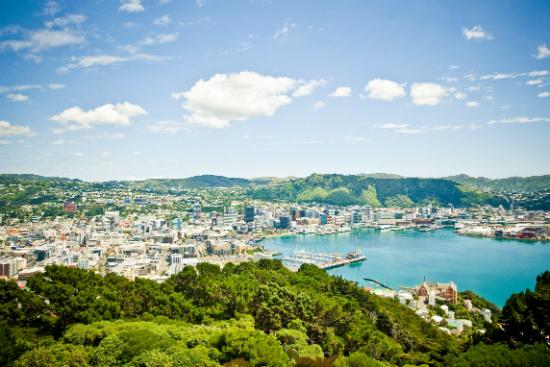 Images via WellingtonNZ.com | Mount Victoria View