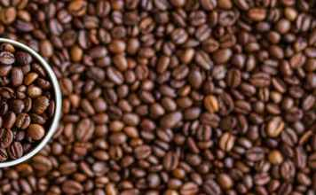 Mestrado em Café | Foto: Pxhere.com, CCO license