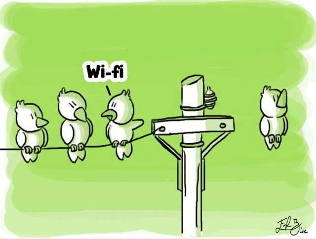 Pájaro con WiFi