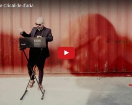 nevica-noise-crisalide-aria-cover-video