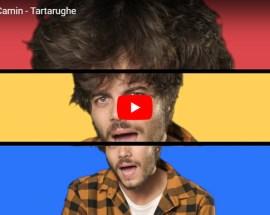 Francesco Camin, Tartarughe - Video