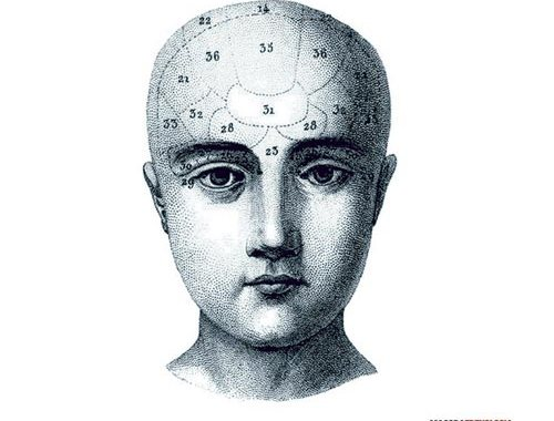 Magora - Frenologia - copertina disco con testa