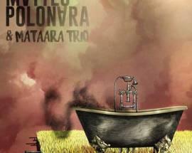 Matteo Polonara & Mataara Trio, Nella Vasca o Nel Giardino di Fianco? - copertina disco