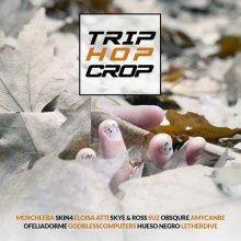 La copertina della compilation TRIP HOP CROP