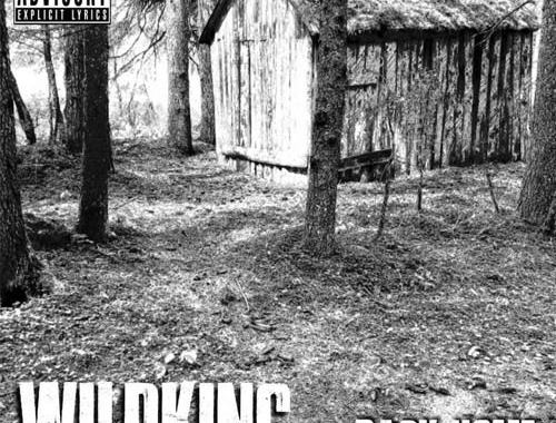 Copertina del disco dei WildKing, Back home