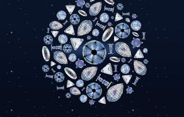 Copertina del disco dei La Stanza della Nonna: Dove gli occhi non possono arrivare