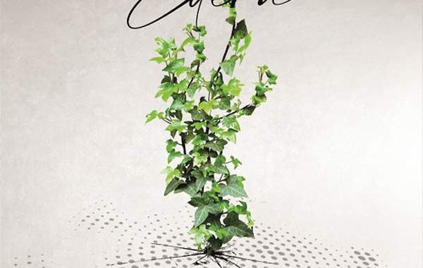 un ramo di edera nella copertina disco de Le Fasi