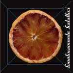 una fetta di arancia in copertina del disco di Emotivamente Galattici