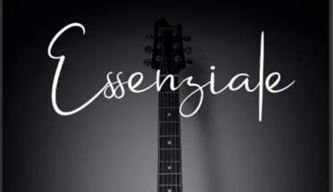 chitarra in copertina del libro dei Grace N Kaos, Essenziale - Storia di Successo di una band di Insuccesso