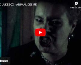 copertina del Video di Magic Jukebox: Animal Desire