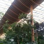 Séjour Center Parcs les 3 forêts, jour 1.