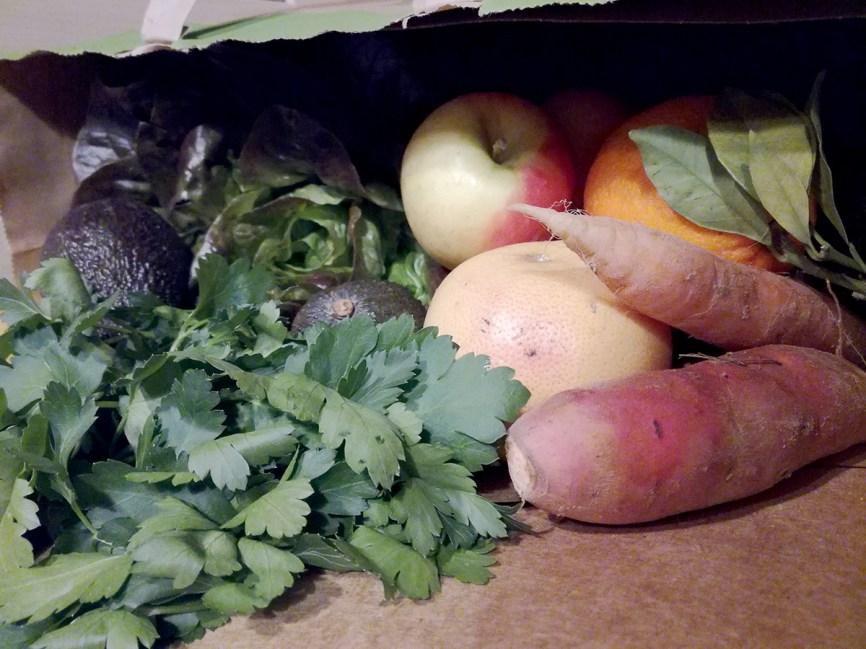 fruits legumes potager city