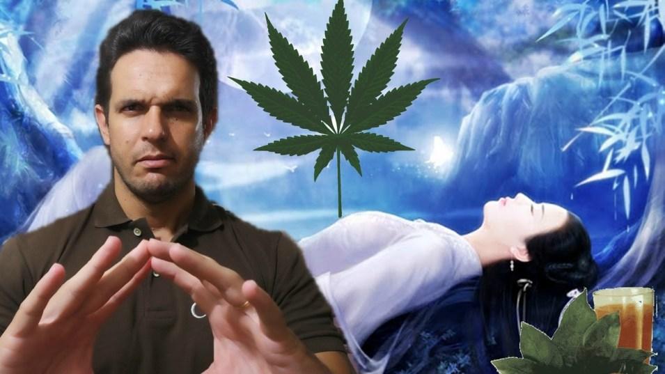 a8 Ayahuasca: Alucinógeno ou Transcendência  Espiritual?