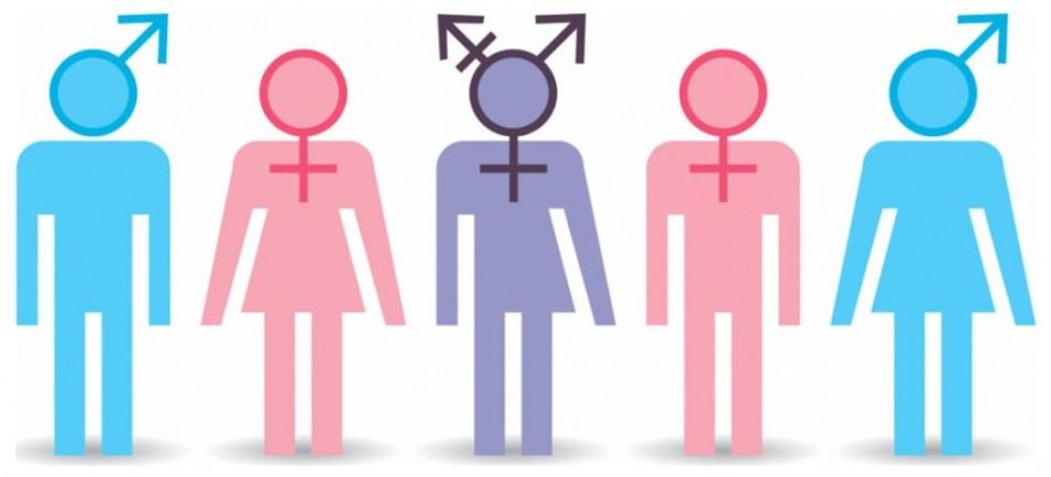 I1-2 Ideologia de Gênero: Deus Estava Errado