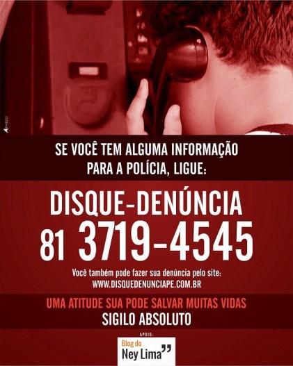 Disque Denúncia 03 2015