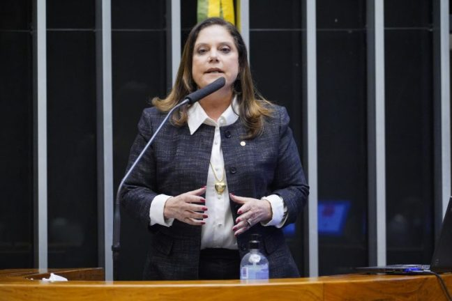 Comissão Geral para tratar da Reforma Eleitoral. Dep. Soraya SantosPL - RJ