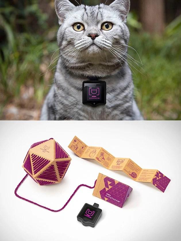 catstacam-wearable-cat-camera