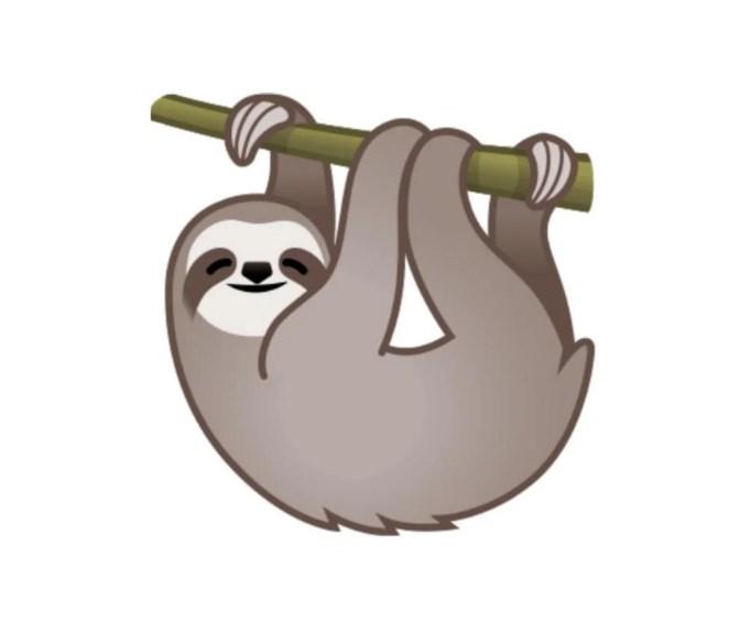 sloth emoji.jpeg