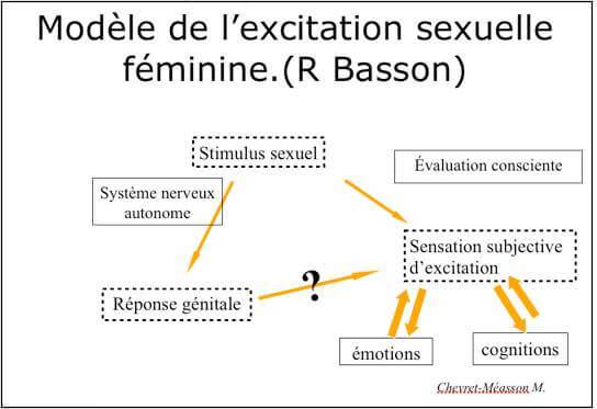 s-modele de l excitation feminine - BASSON