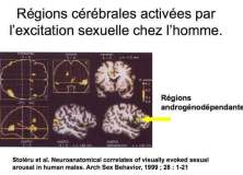 Les troubles du désir liés au déficit androgénique (andropause)