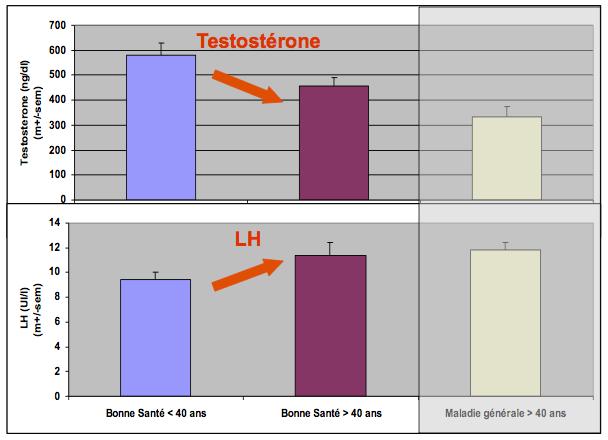 relation LH testosterone age maladie generale