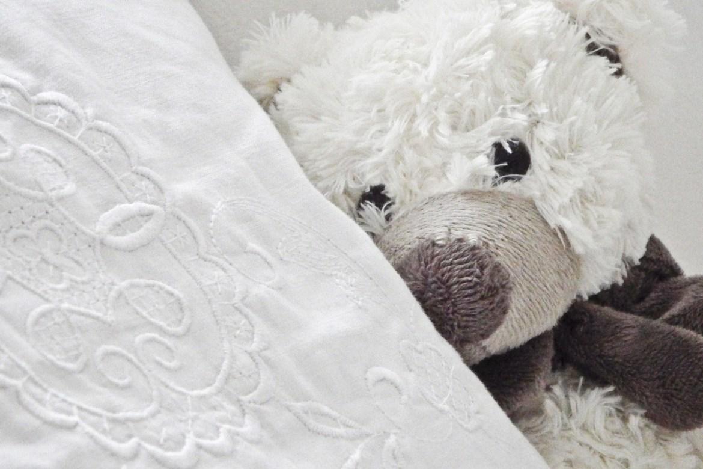 teddy-1724555_1920