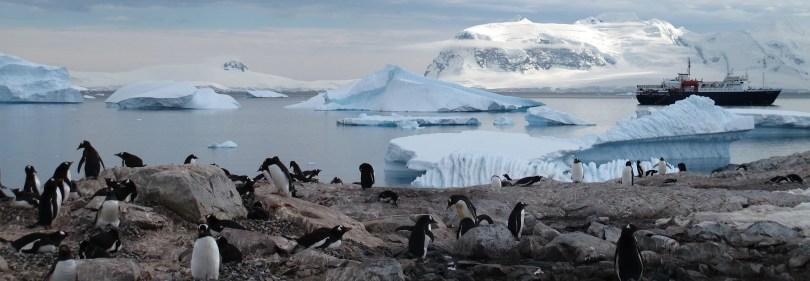antarctica-viajar pelo mundo