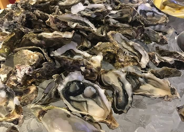 oysters at cordis auckland