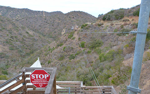 Catalina Zip Line