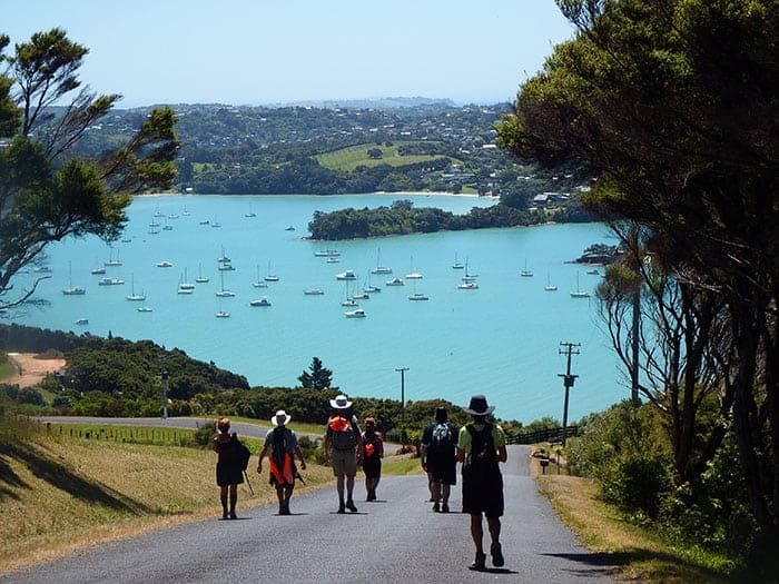Walking on Waiheke with amazing views