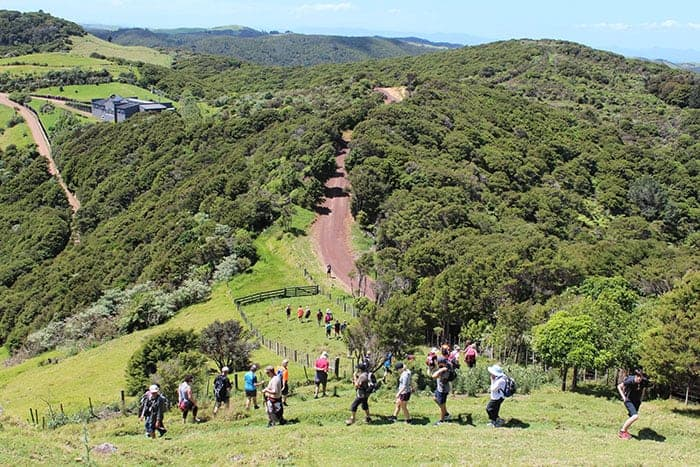 Walking across farmland on Waiheke Island