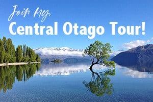 Central Otago tour