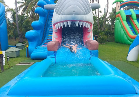Big Bula shark slide