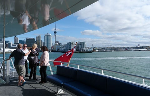 Auckland cruise